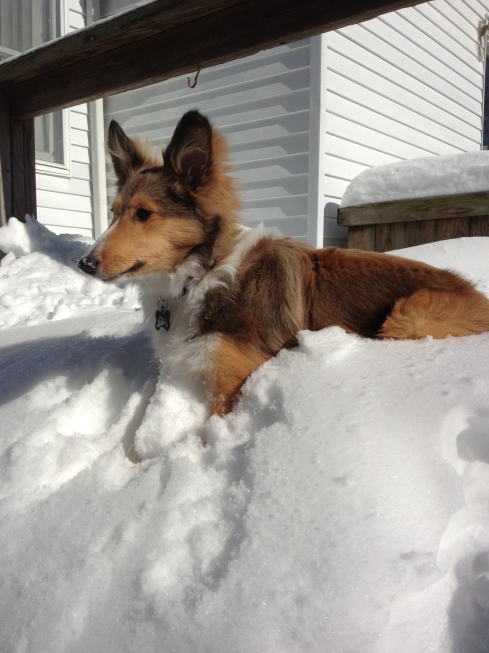 Vera in the Snow