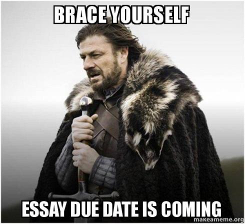 brace-yourself-essay