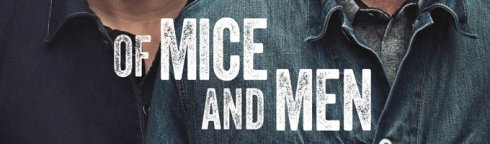 rsz_of_mice_mid